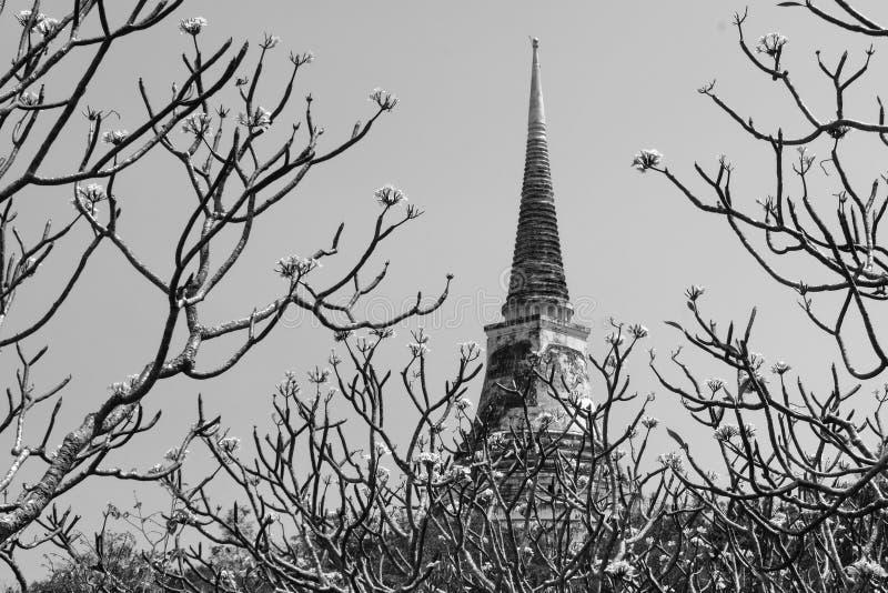 La pagoda del templo en la alta cumbre fotografía de archivo