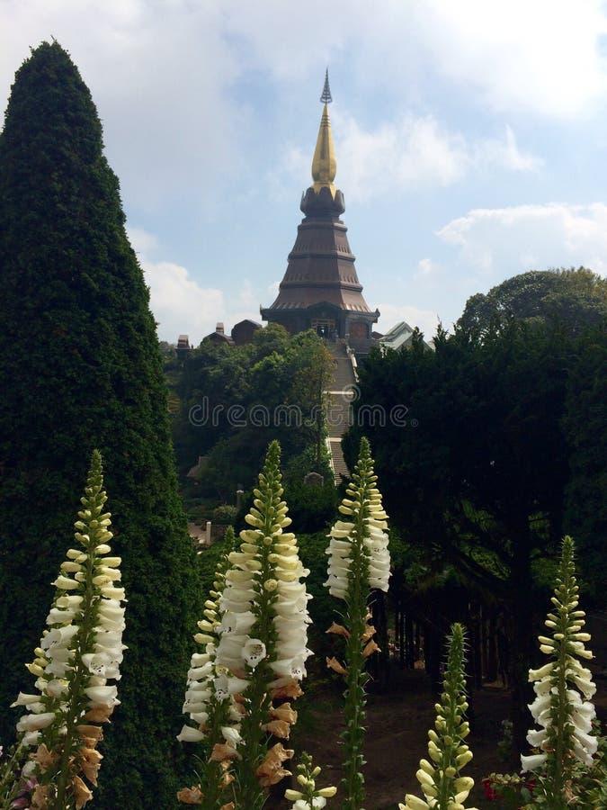 La Pagoda di re immagini stock libere da diritti