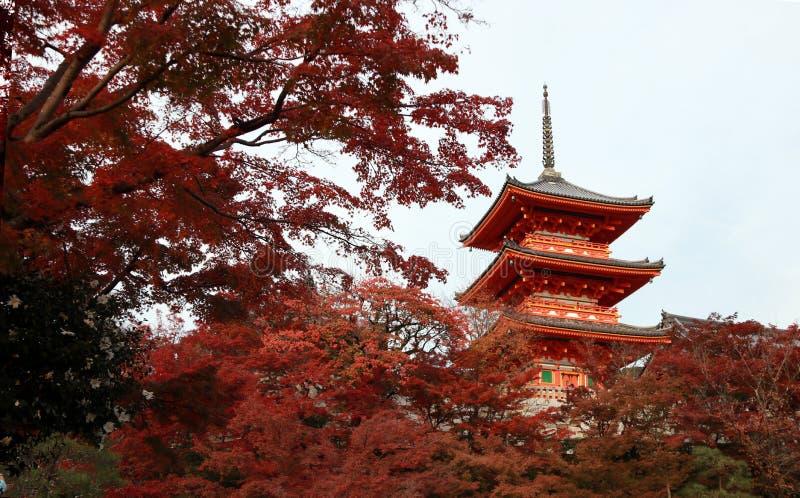 La pagoda tre strati del tetto con rosso va sull'albero dell'autunno al tempio di Kiyomizu fotografie stock