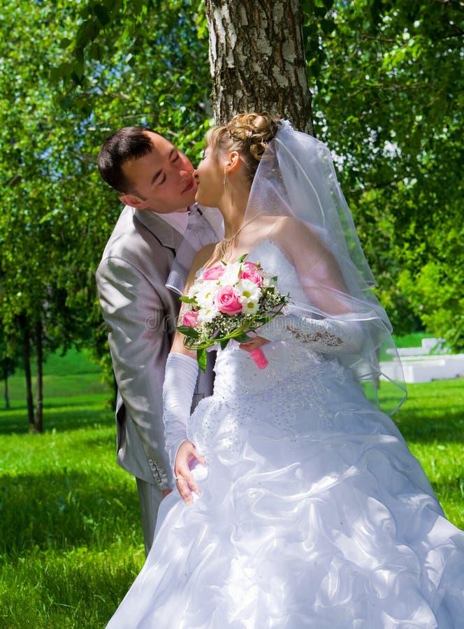 La paire de mariage embrasse près d'un joncteur réseau d'arbre images stock
