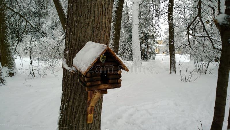 La pajarera en el árbol con el paro fotos de archivo libres de regalías