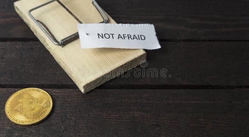 La palabra: No asustado fijado en trampa del ratón con el bitcoin fotografía de archivo