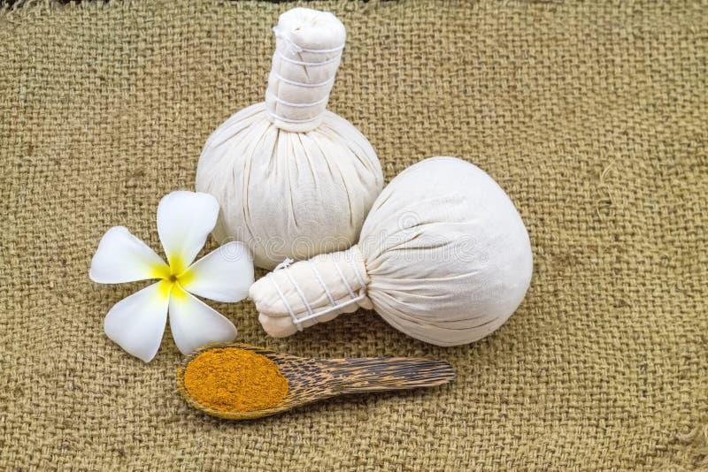 La palla di compressione di erbe della stazione termale, frangipane bianco fiorisce (plumeria immagine stock