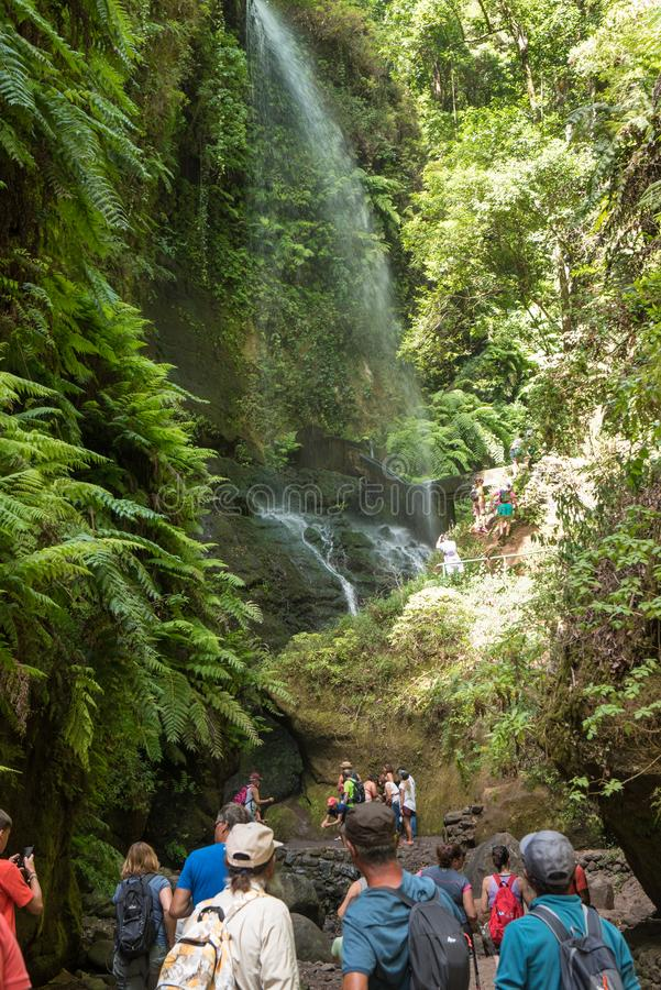`LA PALMA, CANARY ISLANDS, SPAIN - AUGUST 13TH 2017: people admiring the waterfall of the forest of Los Tilos, Biosphere Reserve stock image