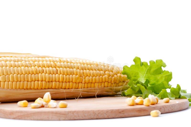 La pannocchia di granturco, i grani, lattuga va con il tagliere su fondo bianco fotografia stock