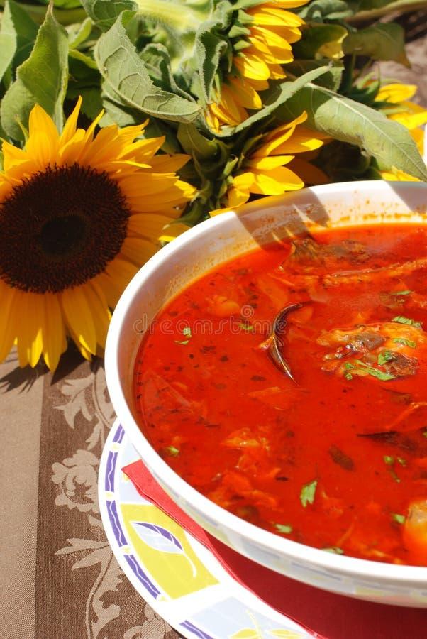 La paprica calda ha basato la minestra dei pesci fotografia stock