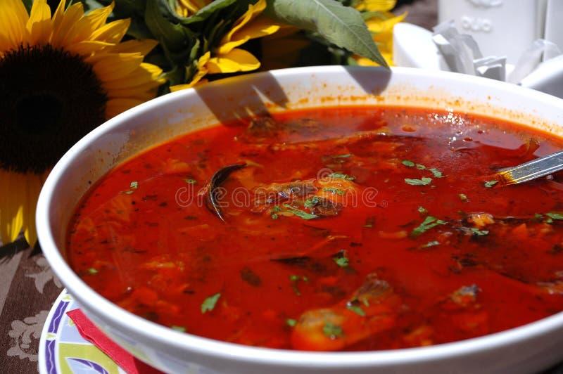 La paprika caliente basó la sopa de los pescados foto de archivo