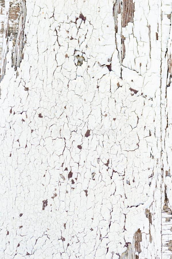 La pared de madera de la textura del Grunge con la pintura blanca está pelando seriamente el fondo abstracto del viejo estilo imagenes de archivo