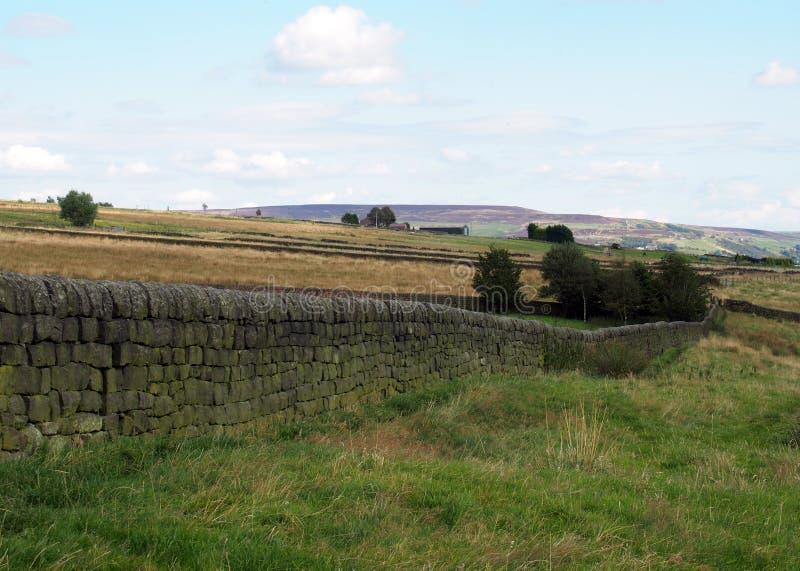 La pared de piedra seca en los valles de Yorkshire ajardina con los campos imagenes de archivo