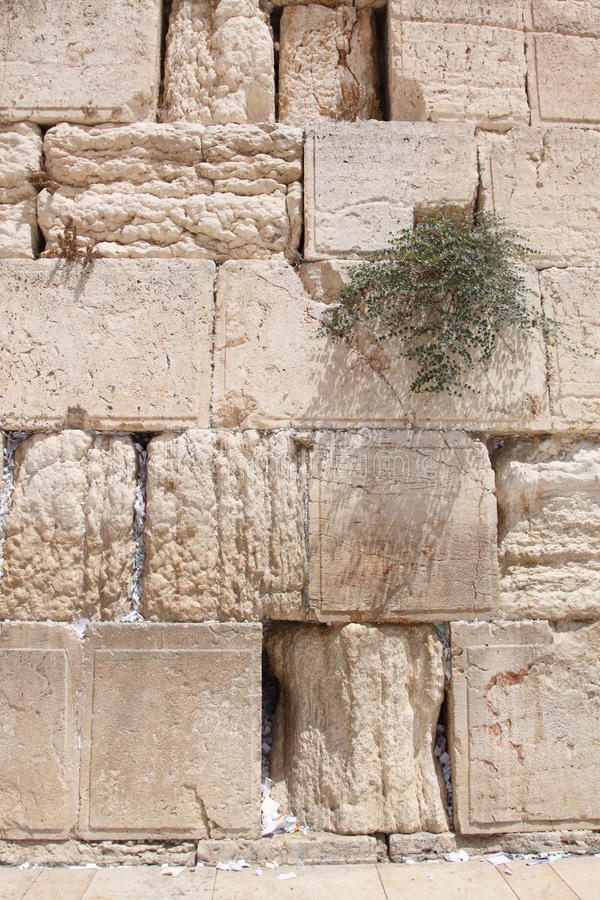 La pared que se lamenta, Jerusalén, Israel fotos de archivo libres de regalías