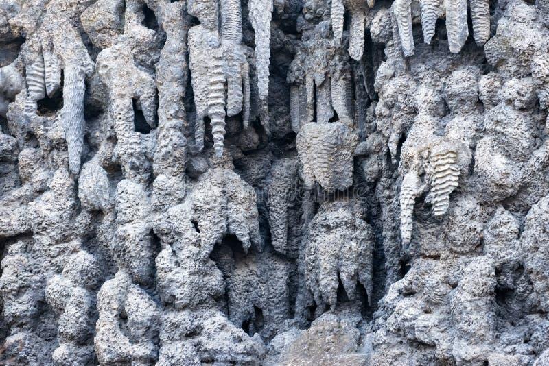 La parete artificiale della stalattite fatta dello stucco della calce nel giardino barrocco in anticipo di Wallenstein, costruito immagini stock libere da diritti