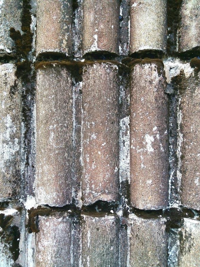 La parete del cemento è forma curva con colore chiazzato fotografia stock