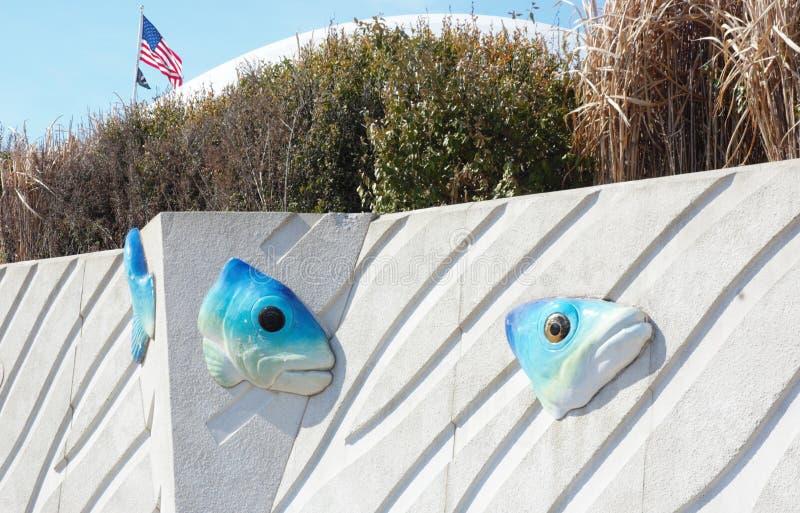 La parete dell'acquario di New York fotografie stock
