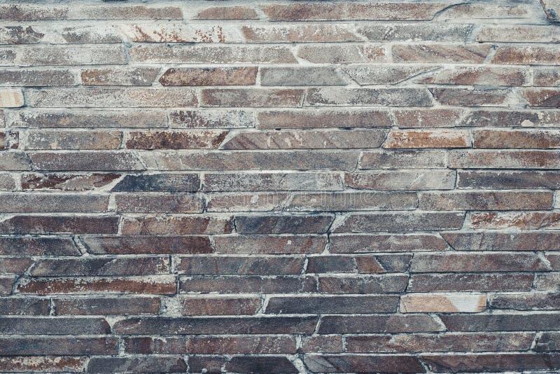 La parete di grigio-Brown è allineata con le mattonelle decorative Struttura marrone chiaro della parete di pietra Oscilli la str immagine stock