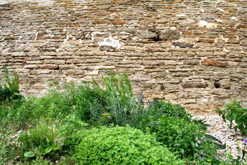 La parete di pietra della fortezza fotografia stock libera da diritti