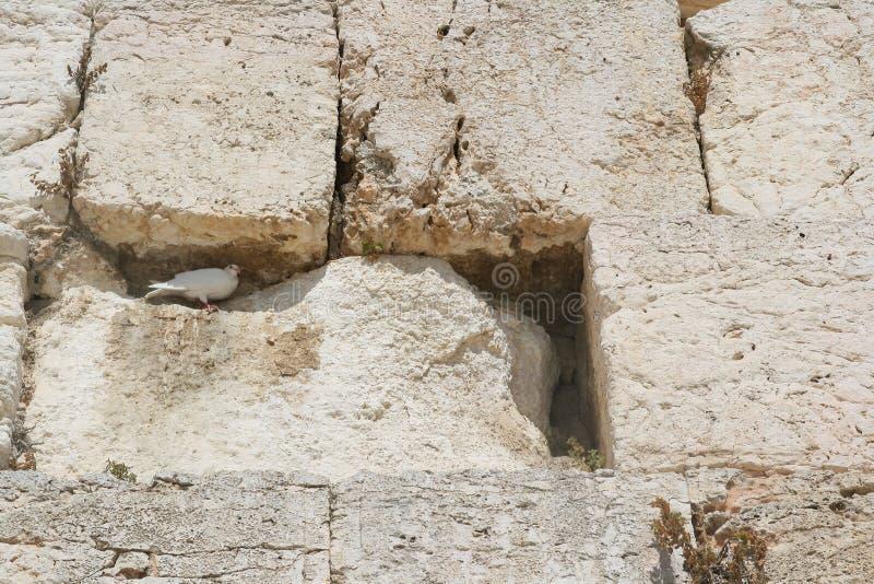 La parete lamentantesi, Gerusalemme fotografia stock
