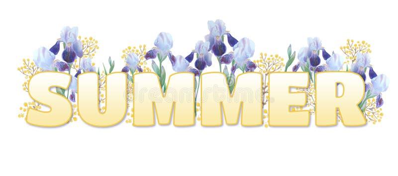 """La parola """"estate """" Iscrizione gialla di pendenza su fondo bianco Iridi luminose e ramoscelli gialli illustrazione di stock"""