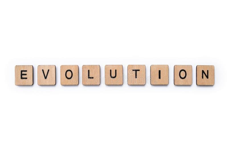 La parola EVOLUZIONE fotografie stock libere da diritti