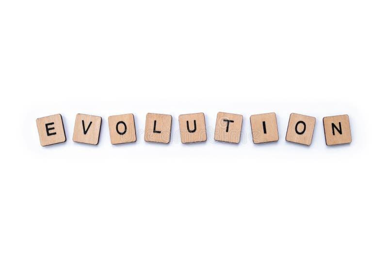 La parola EVOLUZIONE fotografia stock libera da diritti