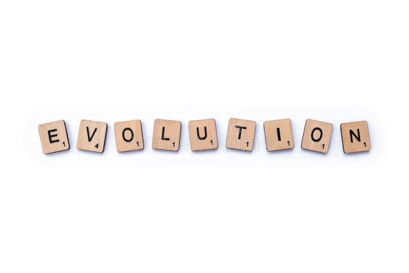 La parola EVOLUZIONE fotografia stock