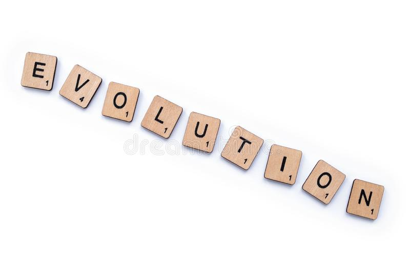 La parola EVOLUZIONE immagine stock libera da diritti