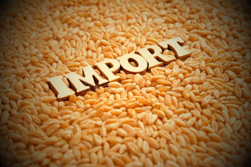 La parola IMPORTAZIONE ? composta di lettere di legno sui precedenti dei grani del grano Vignettatura, tonificante Rapporti econo immagini stock