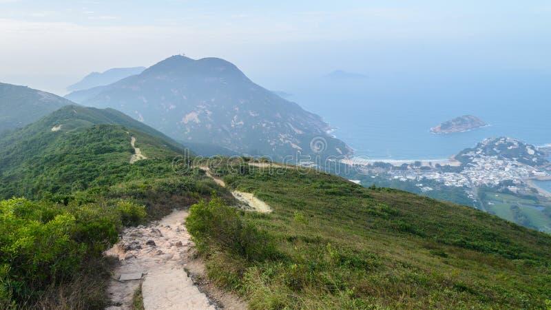 La parte posterior del dragón en Hong Kong imagen de archivo libre de regalías