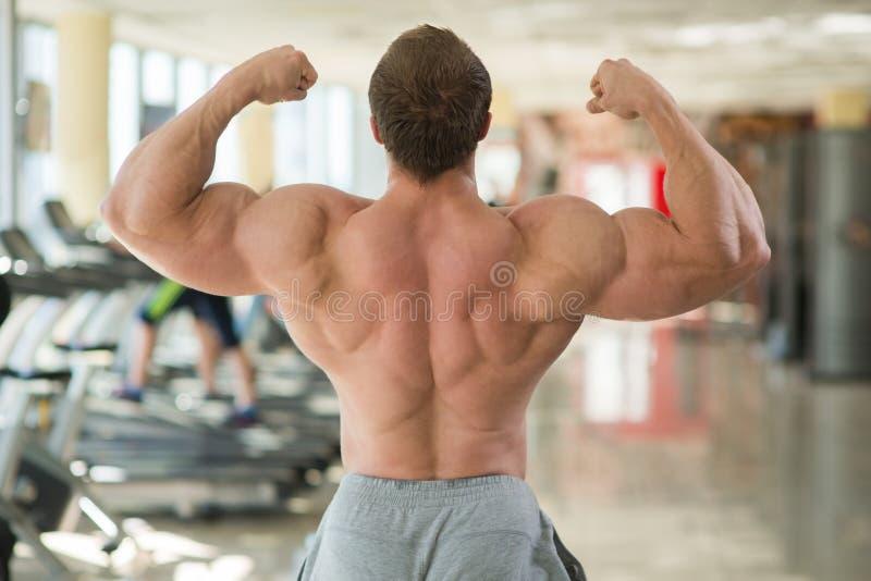 La parte posterior del hombre muscular foto de archivo libre de regalías