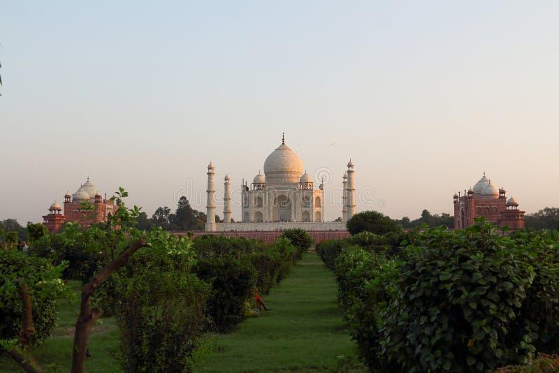 La parte posterior del Taj Mahal en la puesta del sol fotografía de archivo libre de regalías