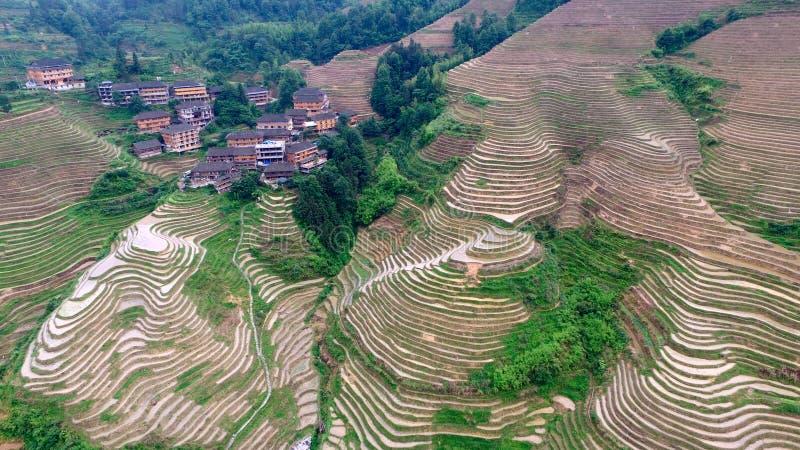 La parte posteriore del drago di Guilin fotografie stock libere da diritti