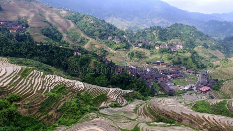La parte posteriore del drago di Guilin fotografia stock libera da diritti