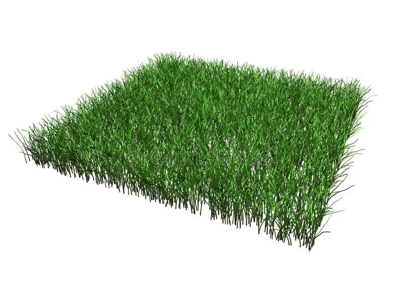 La partie d'herbe a isolé illustration stock