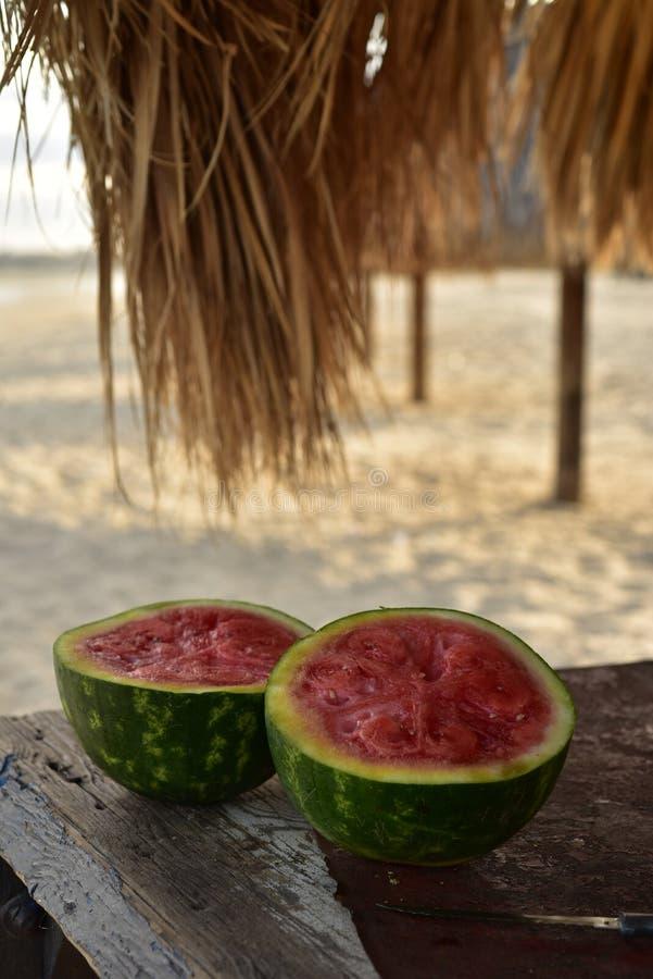 La pastèque sous la paume a couvert le parapluie de chaume sur la plage de la mer de Cortez, San Felipe, Baja, Mexique photos libres de droits