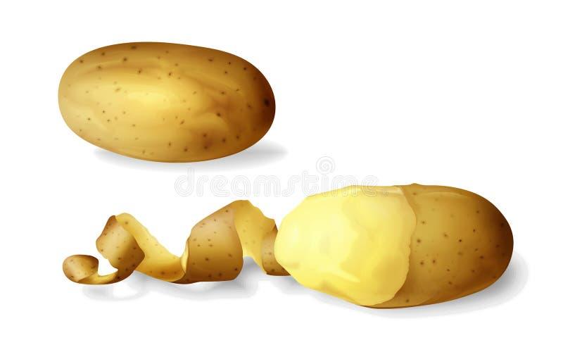 La patata peló el ejemplo del vector 3D de entero vegetal aislada de la patata realista y mitad pelados y espiral torcidos stock de ilustración