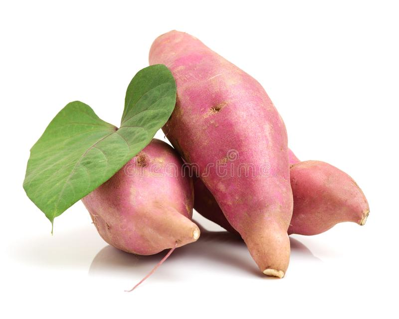 La patate douce ipomoea batatas ou batat photo stock