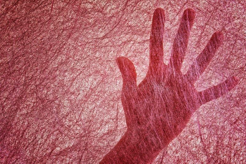 La paume de femmes pour un Bourgogne mince a senti le tissu ressembler à une toile d'araignée arachnophobia Recherche utilisant l images libres de droits