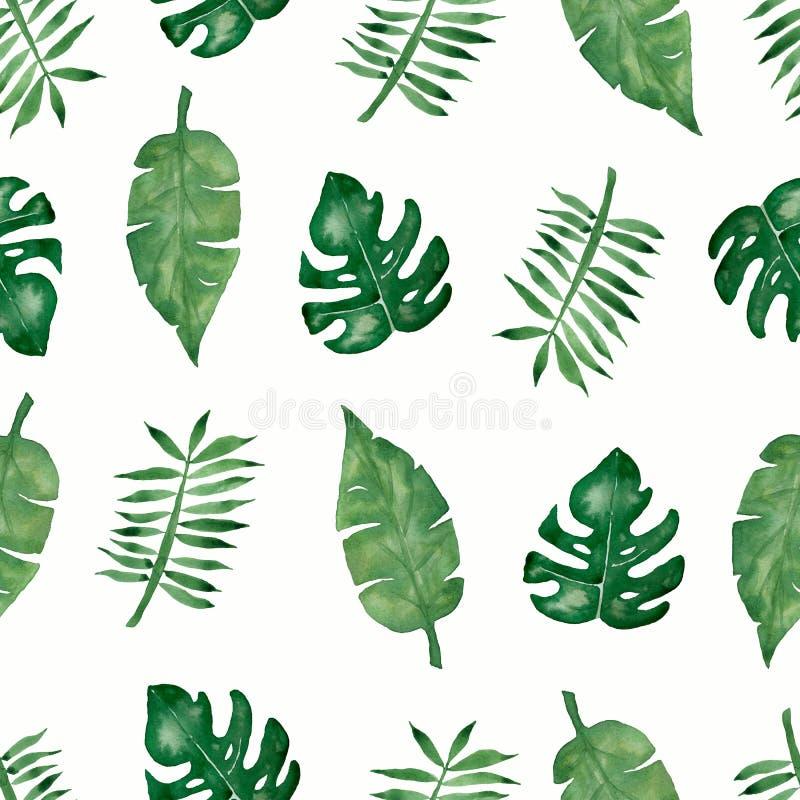 La paume tropicale d'aquarelle, monstera part du modèle sans couture illustration libre de droits