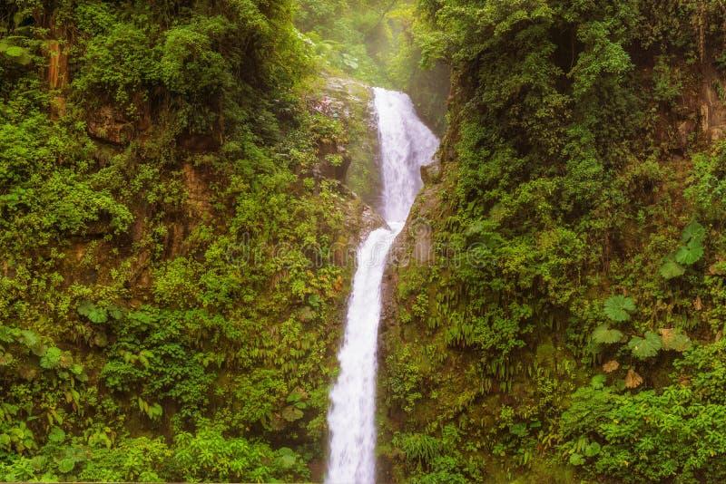 La Paz, der Frieden, Wasserfall in zentralem Costa Rica stockfoto