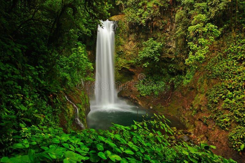 La Paz Waterfall arbeta i trädgården, med den gröna tropiska skogen, Central Valley, Costa RIca arkivbild
