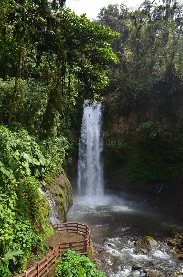La Paz Waterfall Costa Rica lizenzfreie stockfotos