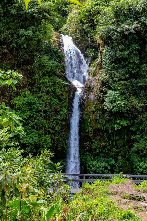 La Paz Waterfall gardens, with green tropical forest in Central Valley, Costa Rica. In Central America stock images