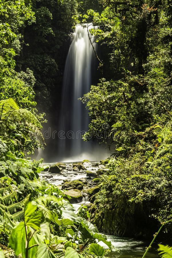 La Paz Waterfalls dans la forêt tropicale photo libre de droits