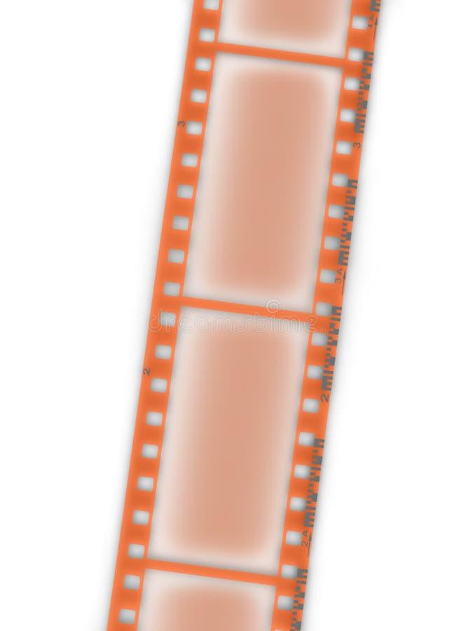 La película negativa aisló fotos de archivo libres de regalías