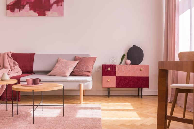 La pelle scamosciata operata ha coperto il gabinetto di vaso alla moda nero accanto al sofà grigio comodo con il cuscino rosa pas immagini stock libere da diritti