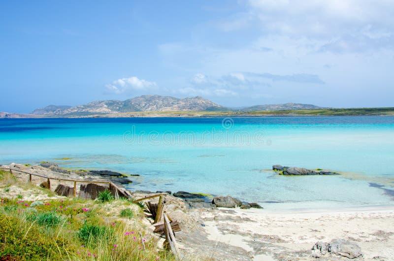 La Pelosa斯廷廷奥-撒丁岛的美丽的海岸北部的 图库摄影