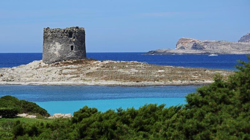 La Pelosa海滩,斯廷廷奥,撒丁岛 免版税图库摄影