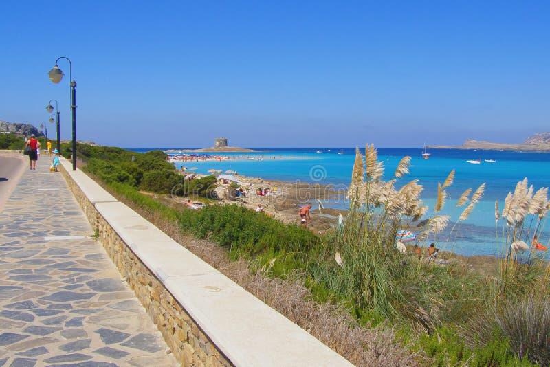 La Pelosa beach in Sardinia, Italy royalty free stock photography