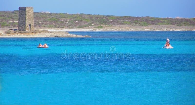 Download La Pelosa Beach In Sardinia - Italy Stock Image - Image: 9835073