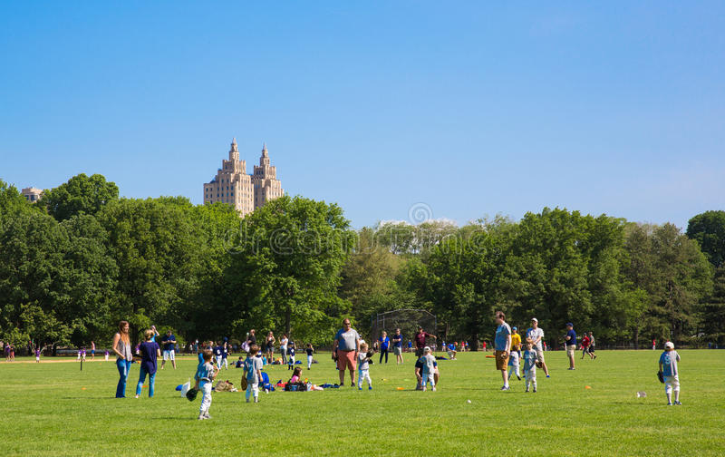 La pelouse grande dans Central Park photographie stock