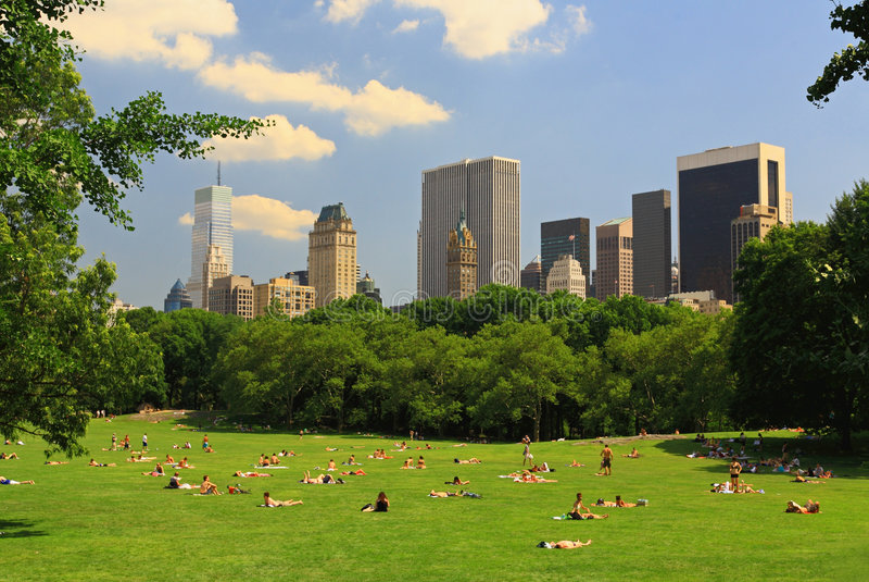 La pelouse grande dans Central Park photographie stock libre de droits